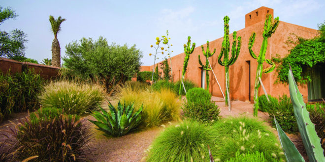 Ô Jardins : La passion du détail